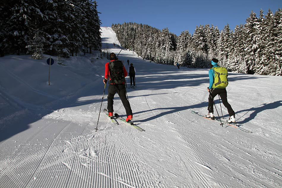 amici che sciano