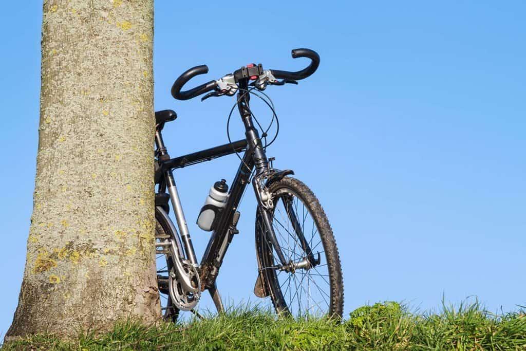 Migliori Bici da Trekking : Guida alla Scelta e Top 6!