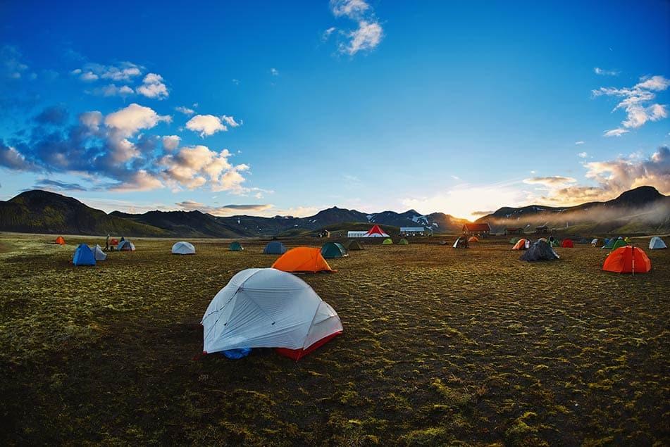 tenda scout