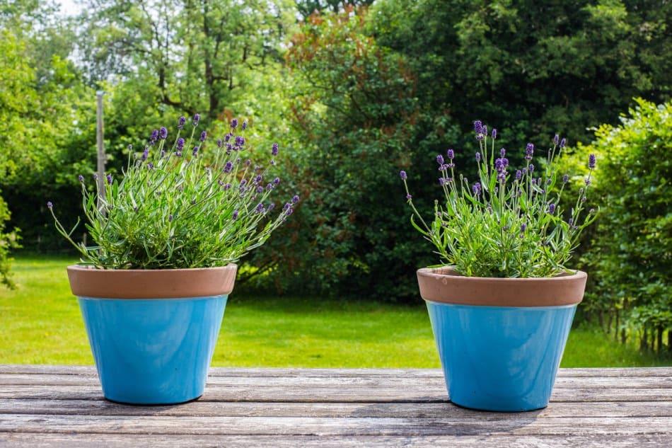 12 Interessanti Idee per Arredare il tuo Giardino