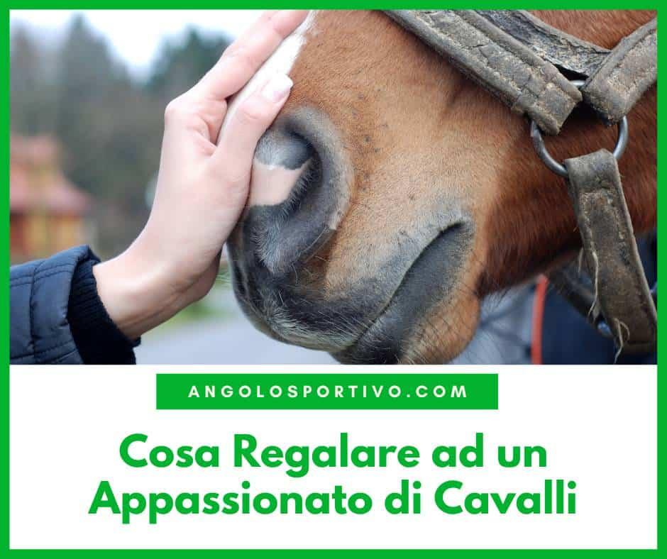 Cosa Regalare ad un Appassionato di Cavalli